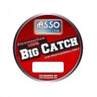 ASSO BIG CATCH 50M 0.40